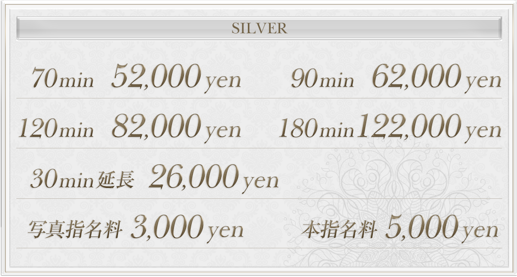 silverの料金